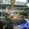 храм тигра-нац.парк краби