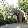 Слоник там есть. Волосатый.
