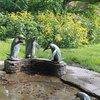 Пингвины в Стадтпарке. Выглядят, по-моему, слегка странновато - такое впечатление, что самого маленького тошнит ;)