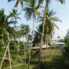 Villa Ocean View, фото с номера