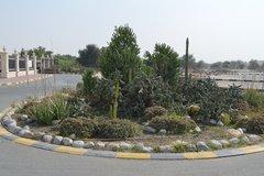 Парк пустыни и Центр дикой природы Аравии