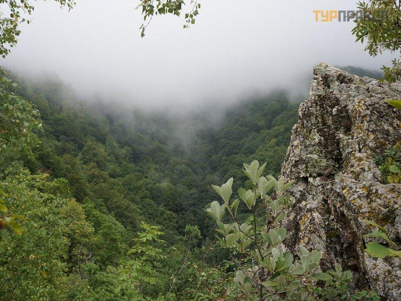 Национальный природный парк Витоша